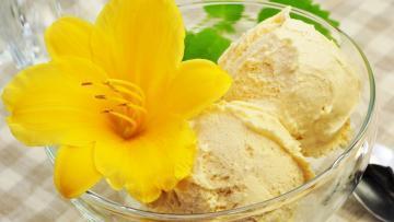 Vanilleeis Rezept ohne Zucker ohne Fett